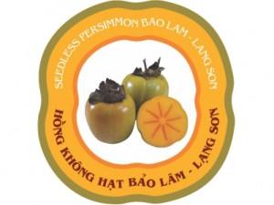 hong-khong-hat-bao-lam